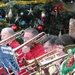 2013-Christmas-Concert-at-the-Milwaukee-Domes-8